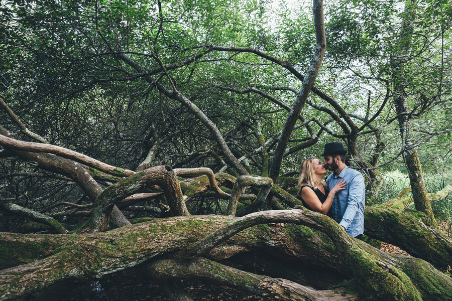 Love Session • Nature Arbre Couple
